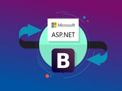 تحميل كتاب تعلم البرمجة بلغة ASP.net حتى الاحتراف PDF