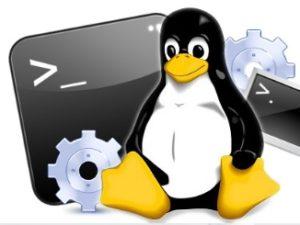تحميل كتاب تعليم أوامر لينكس Linux مترجما للعربية برابط مباشر