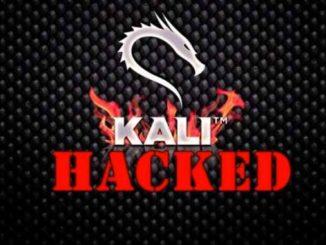 تحميل كتاب دليلك الى نظام كالي لينكس Kali Linux مجانا pdf